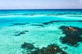 Eau turquoise — Photo