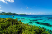 Jungle and Turquoise Water — Stock Photo