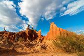 Desert Valley and Cactus — Stock Photo