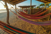 Colorful Beach Hammocks — Stock Photo
