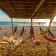 Bright Hammocks and Beach — Stock Photo