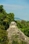 Palenque Temple — Stock Photo