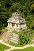 Mayan Temple — Stock Photo