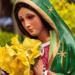 Bright Virgin Mary Statue — Stock Photo #26677933