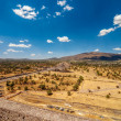 Teotihuacan Vista — Stock Photo