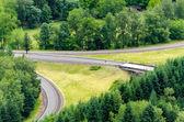 Greenery and Highway Interchange — Stock Photo