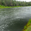 Deschutes River Passing By — Wideo stockowe