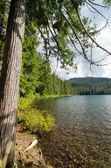 Lower Twin Lake — Stock Photo