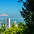 Stock Photo: Portland and Mt Hood