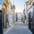 Stock Photo: Recoleta Cemetery View