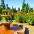 Stock Photo: Fountain in Rose Garden