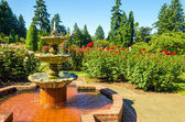 Fountain in a Rose Garden — Stock Photo