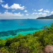 Blue Seand Green Island — Stock Photo #33206133