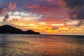 Zářivé tropické slunce — Stock fotografie