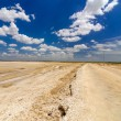 Dirt Road in a Desert — Stock Photo