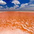 Red Salt Pool — Stock Photo