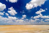 Desert Flatlands — Stock Photo