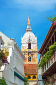 Vertical Cartagena Cathedral — Stock Photo