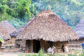 Indigenous Village — Stock Photo