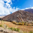 Elqui Valley View — Stock Photo #49836269