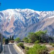 Road Through Andes Mountains — Stock Photo #50175951