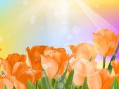Bouquet of fresh spring tulips on bokeh. EPS 10 — Stock Vector