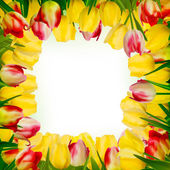 Greeting card with colorful flower. EPS 10 — Stok Vektör