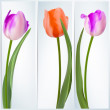 Set of banners with colorful flower. EPS 10 — Stockvector #26599679