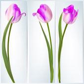Conjunto de banderas con flores de colores. eps 10 — Vector de stock