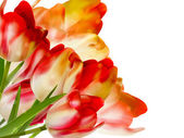 Bouquet spring red tulips on white. EPS 10 — Stock vektor