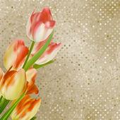 Red tulips against retro polka dot. EPS 10 — Stock Vector