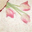 Vintage card Tulip on polka dot background. EPS 10 — Grafika wektorowa