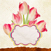 Beautiful tulips against polka dots. EPS 10 — Vector de stock