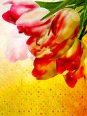 Vintage květinový rámeček pozadí. eps 10 — Stock vektor