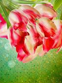 Sfondo vintage cornice floreale. eps 10 — Vettoriale Stock