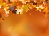 Fundo de outono com folhas. eps 10 — Vetorial Stock