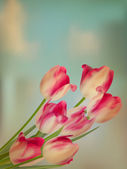 Old paper background with tulips. EPS 10 — Stockvektor
