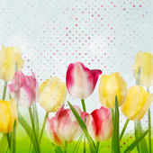 Tulip on polka dot background. EPS 10 — Vecteur