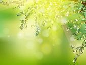 Folhas verdes frescas no natural. eps 10 — Vetor de Stock