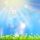 Summer grass in sun light. EPS 10 — Stock Vector