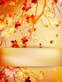 Autumn background with leaves. EPS 10 — Stock Vector