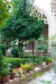 Garden inside a church in Toledo — Stock Photo