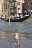 Grand Canal with Gondola (Venice, Italy) — Stock Photo