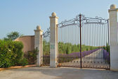 Beautiful iron gate — Stock Photo