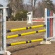 Show jumping is ready - Stock Photo