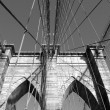 Stock Photo: Monochromatic view of Brooklyn Bridge