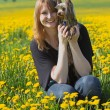 Young girl with yorkshire terrier in the dandelion meadow — Stock Photo