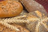 Pan de trigo entero — Foto de Stock