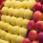 Fruits on the market — Stock Photo