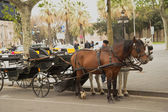 Horse-drawn carriage in Barcelona — Stockfoto